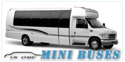 Milwaukee Mini Bus rental