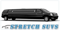 Wedding limousine in Milwaukee, WI