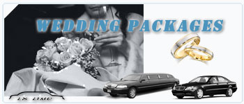 Milwaukee Wedding Limos